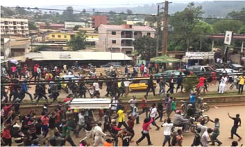 22 killed in clashes in Cameroon English-speaking region: MP