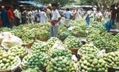 Mango trading gains momentum in Rajshahi, Chapainawabganj