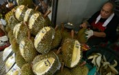 Final Fruit-ier: Thailand sends smelly durian fruit into space