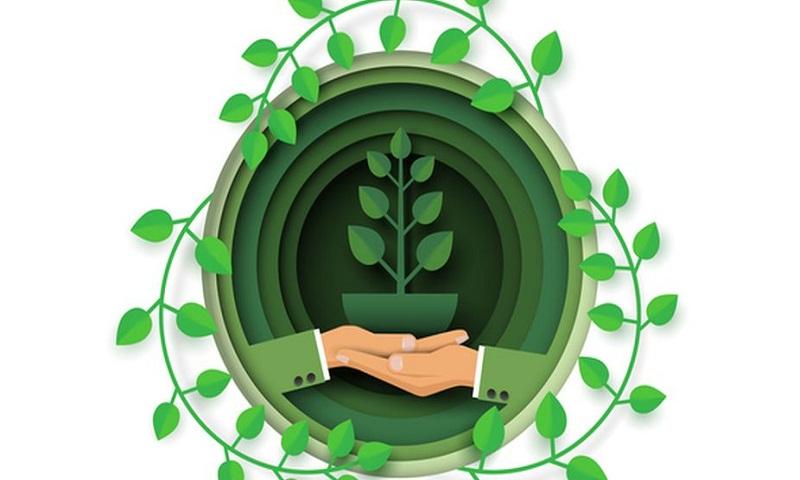 How to follow eco-friendly lifestyle