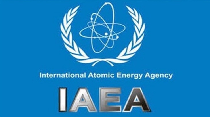 IAEA head welcomes outcome of US-North Korea summit
