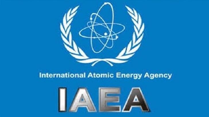 IAEA head welcomes outcome of US-North Korea summit