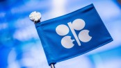OPEC sees 'considerable uncertainty' in oil market