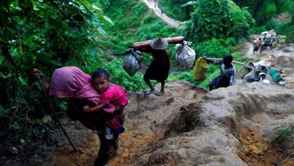 Tree collapse kills Rohingya man in Cox's Bazar