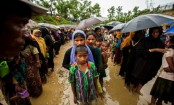 Rohingyas put acute strain on host communities, resources in Cox's Bazar