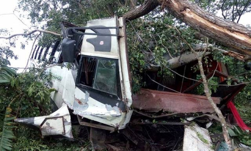 Road crashes in 8 districts leave 35 dead, 105 injured