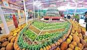 Fruit fest  begins  in capital