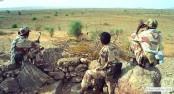 Ethiopia and Eritrea: decades of dispute over a border