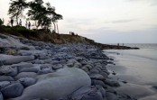 Part of Kuakata sea beach at risk of disappearing