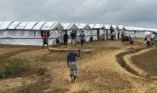 IOM building emergency shelters for Rohingyas