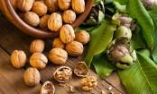 Eat walnuts to ward off diabetes risk