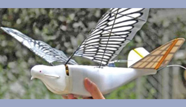 China deploys robotic birds