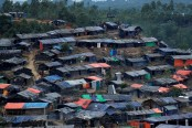 Verification process to help find solutions for Rohingyas: UN
