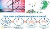 Arbitrary use of antibiotic creates resistant bacteria