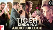 Salman green lights third part in Ek Tha Tiger franchise