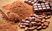 Benefits of cocoa