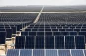 Latin America's solar park turns Mexican desert green
