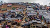 1.3  million people in need in Cox's Bazar: IOM