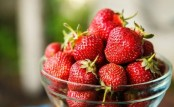 Some types of tomatoes, strawberries can cause allergy: Study