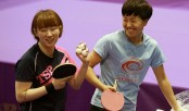 Ping-pong diplomacy between the two Koreas