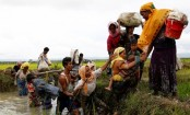 Rights group details lead-up to Myanmar attacks on Rohingya