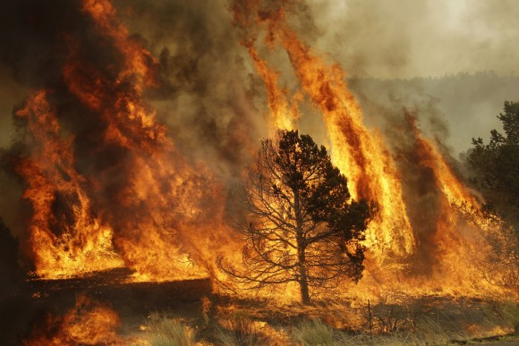 Drought, wildfires following heatwave in Europe