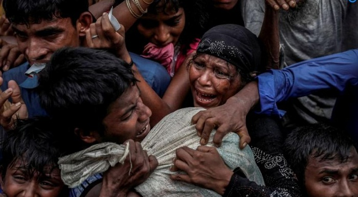 Rohingyas: Physicians want probe into crimes against humanity