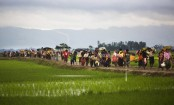 UN urges Myanmar to create conditions for Rohingya return
