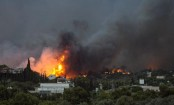Greece wildfires: At least 20 killed, dozens injured