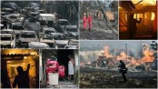 Greece wildfires death toll rises to 74: fire service