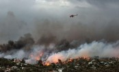Greek wildfires death toll rises to 79
