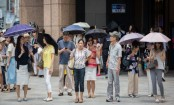 Japan's heatwave death toll climbs to 80