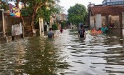 29 killed, 5 missing in Vietnam's flooding