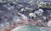 Greek fires: Blaze that killed 83 'caused by arson'