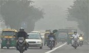 Air quality in Delhi improved due to meteorological factors: Green body