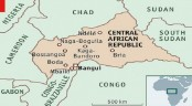 Three Russians 'carrying press cards' killed in Central Africa
