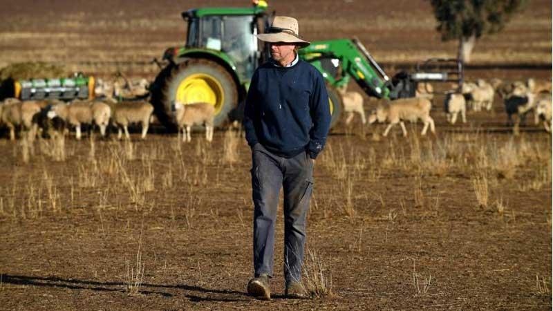 Despair as crippling drought hammers Australian farmers