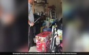 Woman shocked to find venomous snake in garage (Video)