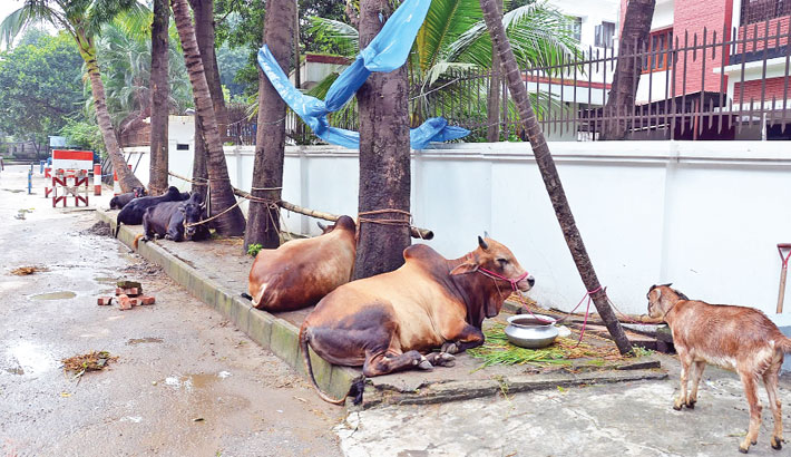 The Cleanliness Factor During Eid