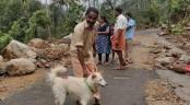 Hero dog saves Indian family in flood-hit Kerala