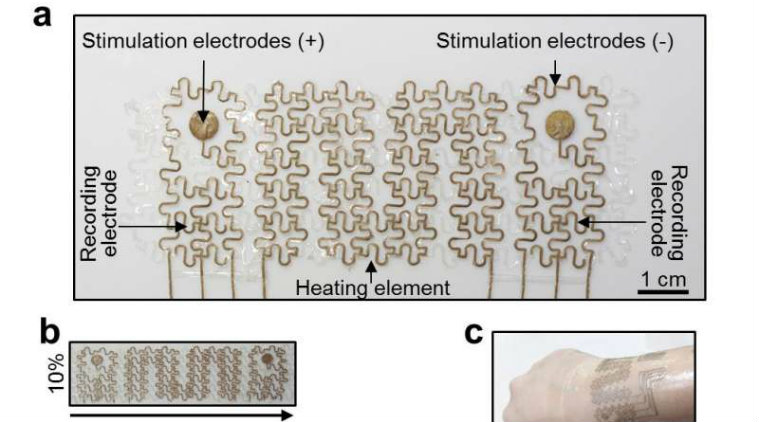 Heart health can be monitored by wearable soft electronic mesh