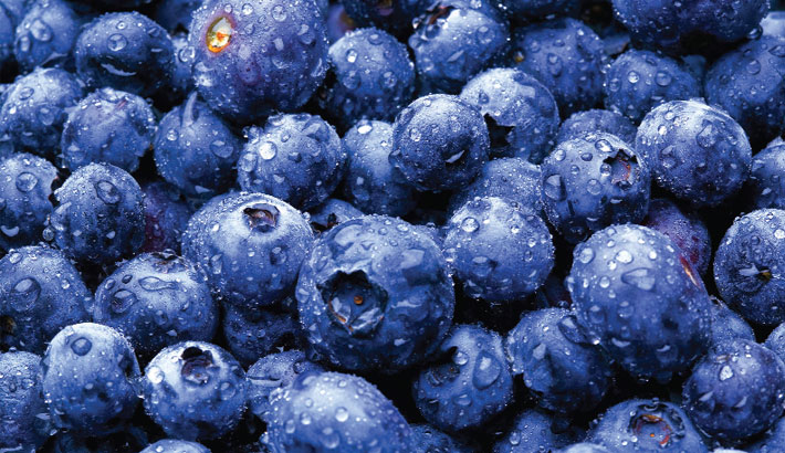Eat Blueberries  To Stay In The Pink