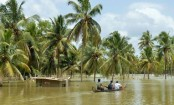 Kerala floods: Death toll climbs to nearly 400