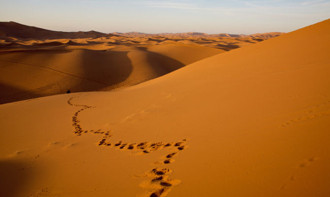 Climate change to impact desert ecosystems: Chinese researchers