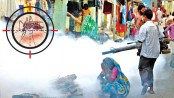 41 dead, over 36,000 infected by dengue in Sri Lanka