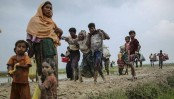 Rohingya who stayed behind still persecuted in Myanmar