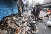 Crisis over rawhide sale to be over soon: Tofail