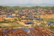 Australia seeks justice for Rohingyas, steps against perpetrators