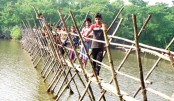 Bamboo bridge over the Khapradanga river