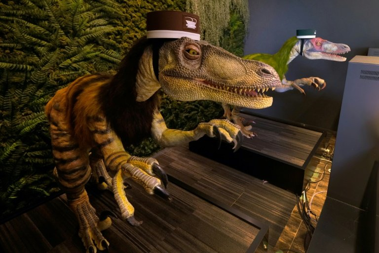 Robot dinosaurs serve guests at this Japanese hotel